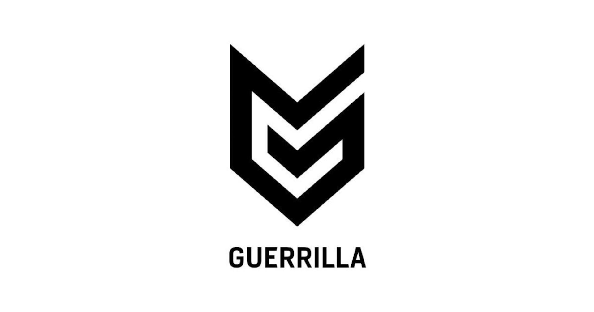 Guerrilla Games درحال ساخت یک بازی محرمانه است